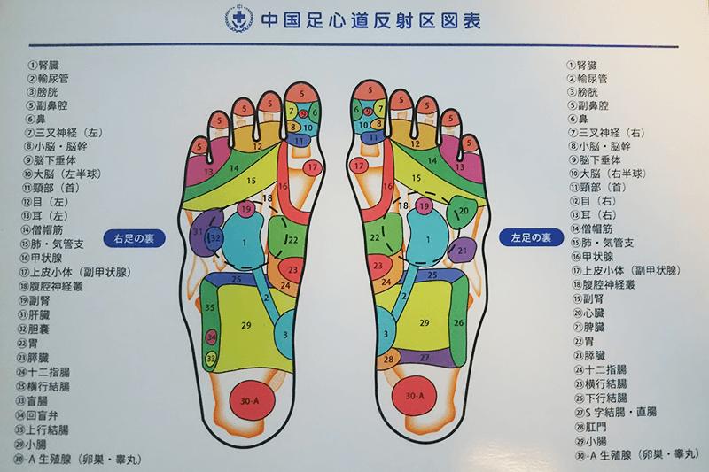 中国足心道反射区図表
